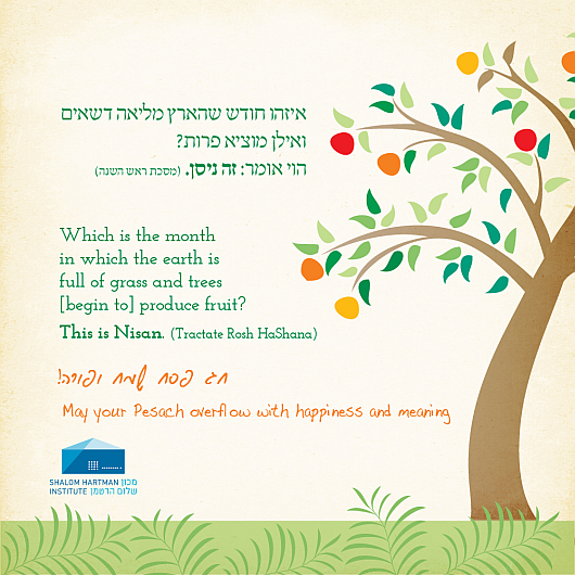 Pesach greetings from shalom hartman institute shalom hartman pesach greetings from shalom hartman institute shalom hartman institute m4hsunfo